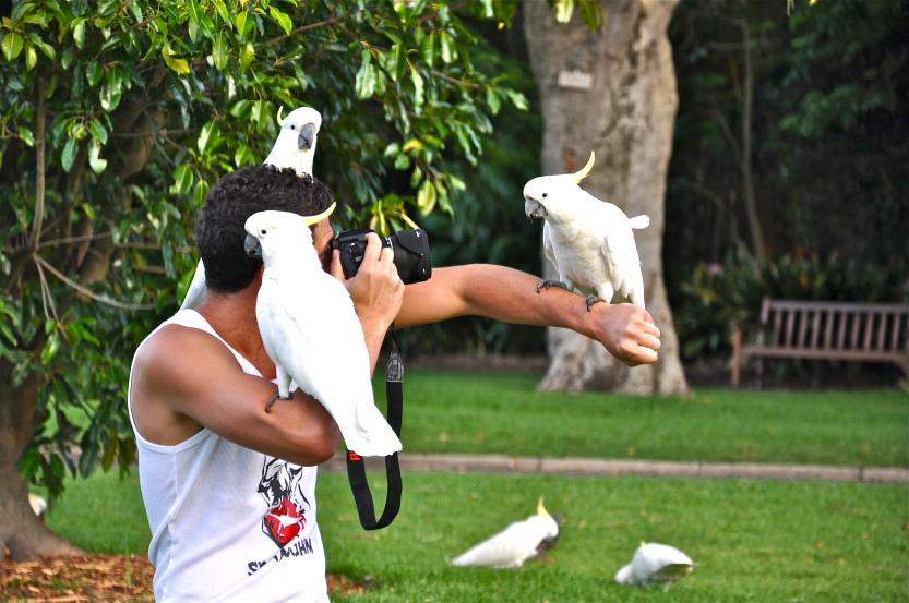 A tourist having a uniquely Australian experience